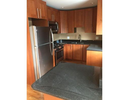 独户住宅 为 出租 在 32 Linden Street 布鲁克莱恩, 马萨诸塞州 02445 美国