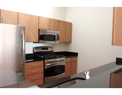 独户住宅 为 出租 在 40 River Street 波士顿, 马萨诸塞州 02126 美国