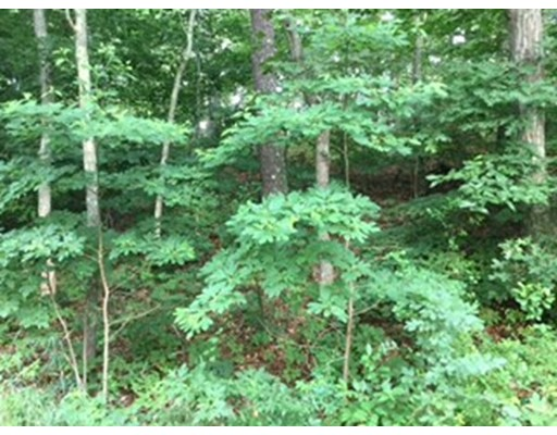 Land for Sale at Great Fields Road Brewster, Massachusetts 02631 United States