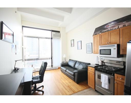 Additional photo for property listing at 12 Streetoneholm Street  波士顿, 马萨诸塞州 02115 美国