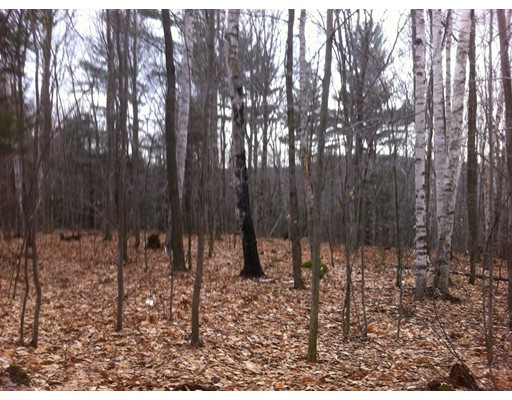 Land for Sale at Johnson Hill Road Chester, 01011 United States