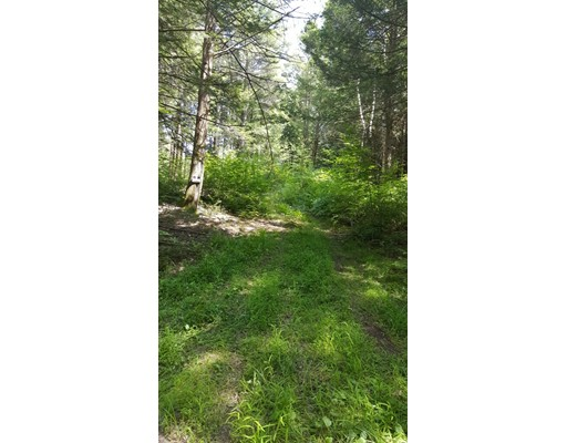 Land for Sale at Chestnut Hill Road Warwick, Massachusetts 01378 United States