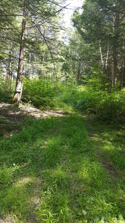 Property for sale at 0 Chestnut Hill Road, Warwick,  MA 01378