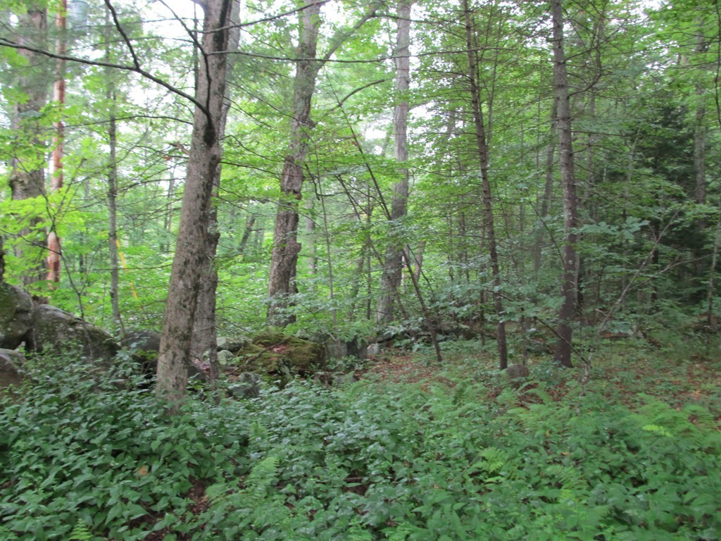 Property for sale at 111 West Road, Petersham,  MA 01366