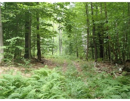 Land for Sale at Center Heath Road Charlemont, Massachusetts 01339 United States