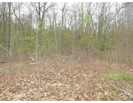Land for Sale at Steam Mill Road Deerfield, Massachusetts 01373 United States