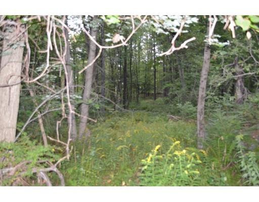 土地 为 销售 在 East Hill Road Brimfield, 马萨诸塞州 01010 美国