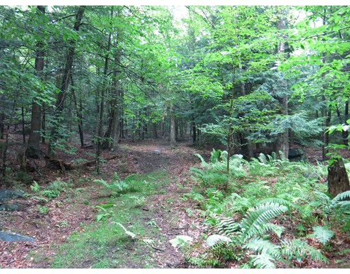 Land for Sale at 1 Spruce Corner Road 1 Spruce Corner Road Ashfield, Massachusetts 01330 United States
