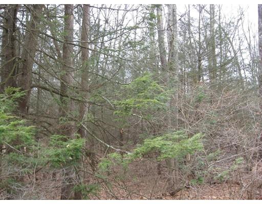 Land for Sale at 121 West Pelham Road 121 West Pelham Road Shutesbury, Massachusetts 01072 United States