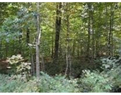 Land for Sale at Round Hill Road Chester, 01011 United States