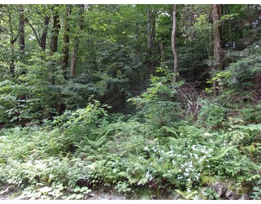 土地 为 销售 在 Address Not Available 贝克特, 马萨诸塞州 01223 美国