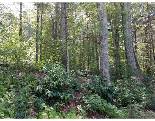 Land for Sale at 4 Old Wine Road New Braintree, Massachusetts 01531 United States