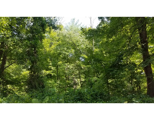 Land for Sale at Cricket Hill Road Cricket Hill Road Conway, Massachusetts 01341 United States
