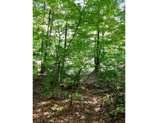 Land for Sale at Old State Hwy Chester, 01011 United States
