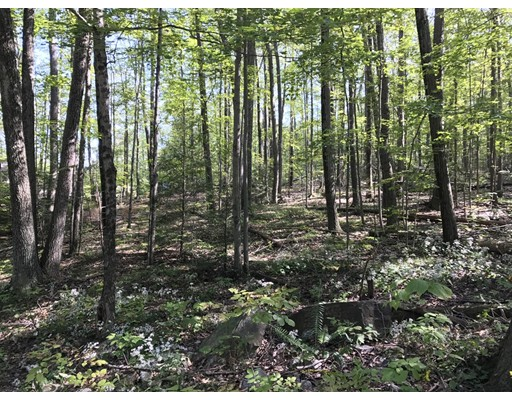 Land for Sale at 11 Carey Road Sturbridge, Massachusetts 01566 United States