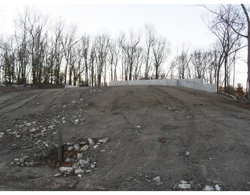 Additional photo for property listing at 95 Willow Brook Lane 95 Willow Brook Lane Blackstone, 马萨诸塞州 01504 美国