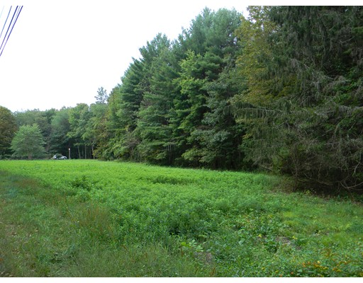 土地 为 销售 在 Sylvester Road Northampton, 马萨诸塞州 01060 美国