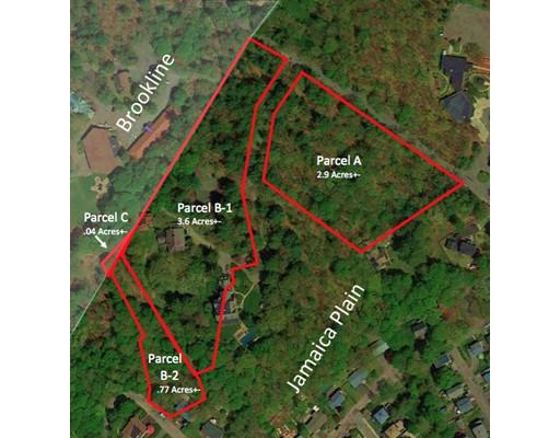 土地 为 销售 在 98 Rockwood Street B1 波士顿, 马萨诸塞州 02130 美国