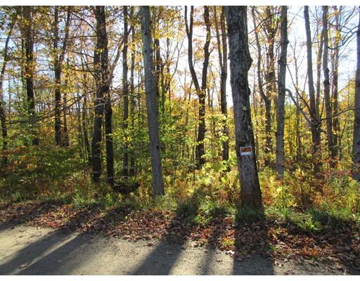 土地 为 销售 在 Friar Tuck Drive Friar Tuck Drive 贝克特, 马萨诸塞州 01223 美国