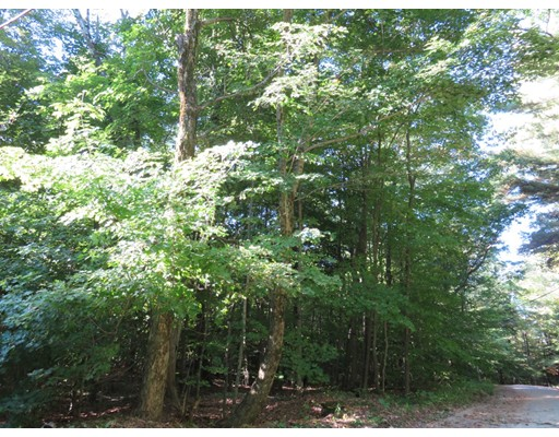 Land for Sale at Pine Dale Circle Pine Dale Circle Becket, Massachusetts 01223 United States