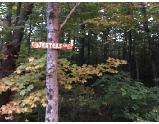 土地,用地 为 销售 在 Address Not Available 贝克特, 马萨诸塞州 01223 美国