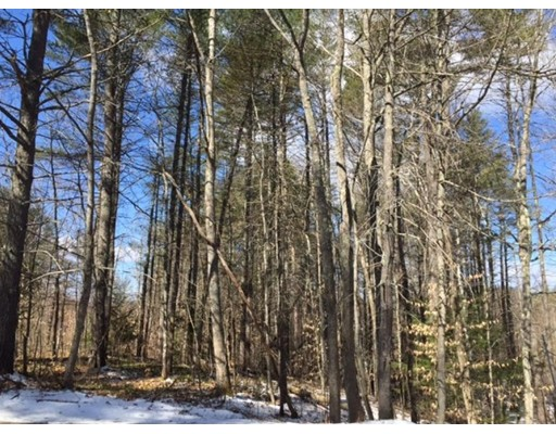 Land for Sale at Province Lake Road Wakefield, New Hampshire 03830 United States