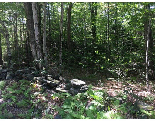 Land for Sale at 4 Bow Street 4 Bow Street Plainfield, Massachusetts 01070 United States