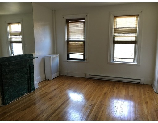 Additional photo for property listing at 210 West Springfield  Boston, Massachusetts 02118 United States