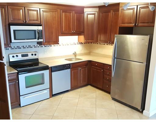独户住宅 为 出租 在 41 Park Street 布鲁克莱恩, 马萨诸塞州 02446 美国