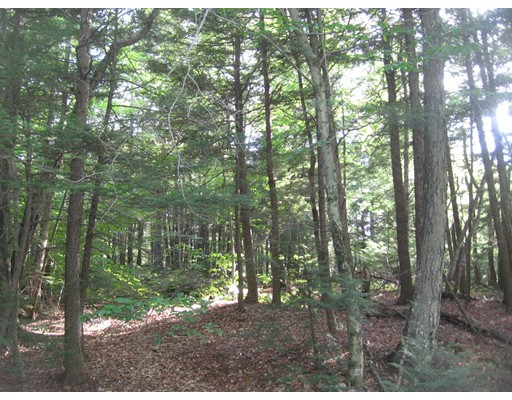 Additional photo for property listing at 4 Sam Hill  Worthington, Massachusetts 01098 Estados Unidos