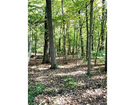 Land for Sale at Red Gate Lane Red Gate Lane Amherst, Massachusetts 01002 United States