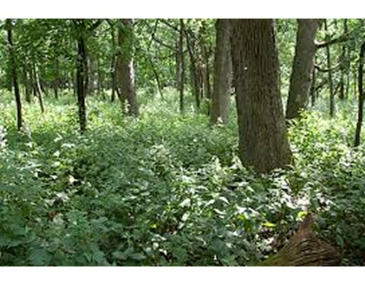 Land for Sale at Stowell Road Stowell Road Ashburnham, Massachusetts 01430 United States