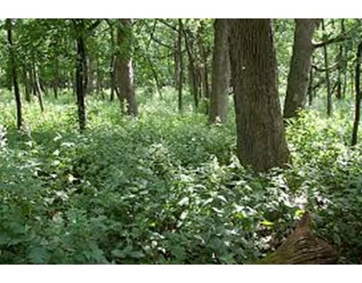 Земля для того Продажа на Stowell Road Stowell Road Ashburnham, Массачусетс 01430 Соединенные Штаты