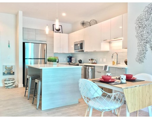 公寓 为 出租 在 449 Canal Street #318 449 Canal Street #318 Somerville, 马萨诸塞州 02145 美国