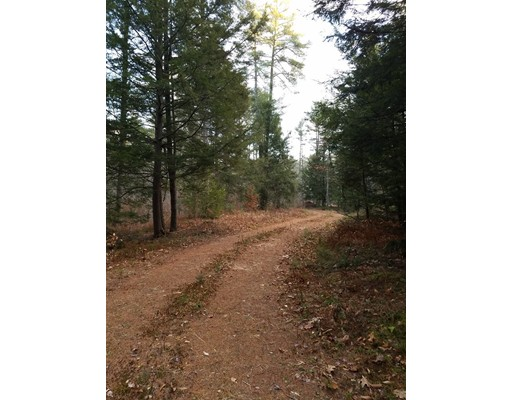Land for Sale at Brown Road Brown Road Royalston, Massachusetts 01368 United States