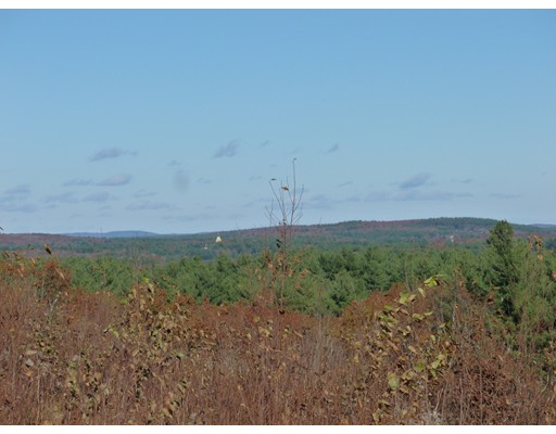 Additional photo for property listing at 11 Chestnut Lane  Littleton, Massachusetts 01460 Estados Unidos