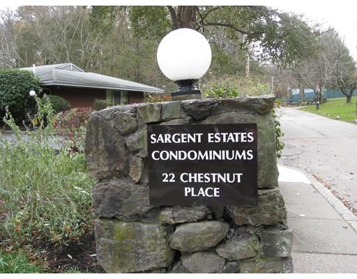 Condominio per Vendita alle ore 22 Chestnut Place 22 Chestnut Place Brookline, Massachusetts 02445 Stati Uniti