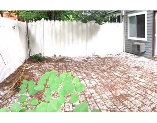独户住宅 为 出租 在 159 Erie Street 坎布里奇, 马萨诸塞州 02139 美国