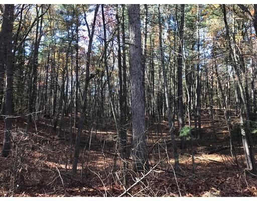 Terrain pour l Vente à 36 College Road 36 College Road Concord, Massachusetts 01742 États-Unis