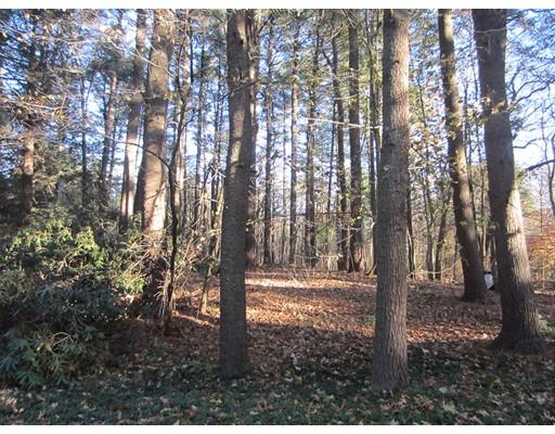 Land for Sale at 2 Winchelsea Lane 2 Winchelsea Lane Lincoln, Massachusetts 01773 United States