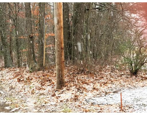 土地,用地 为 销售 在 Address Not Available Whately, 马萨诸塞州 01093 美国