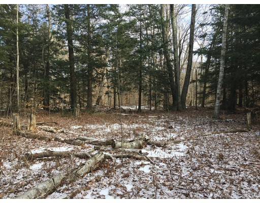Land for Sale at 209 Sherwood Drive 209 Sherwood Drive Becket, Massachusetts 01223 United States