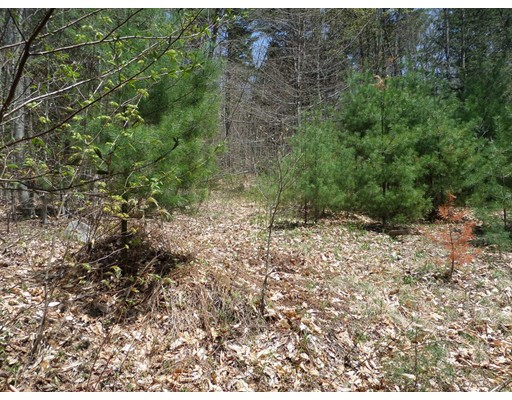 Land for Sale at 196 Prospect Street 196 Prospect Street Plainfield, Massachusetts 01070 United States