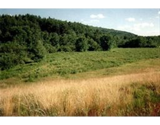 土地,用地 为 销售 在 Stafford Road Monson, 01057 美国