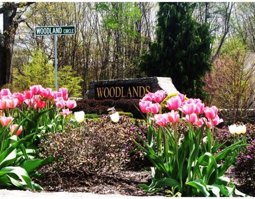 Condominium for Sale at 410 Fernwood Lane 410 Fernwood Lane Clinton, Massachusetts 01510 United States