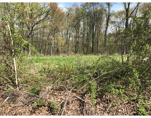 Additional photo for property listing at Tannery Rd L:34  Agawam, Massachusetts 01001 Estados Unidos