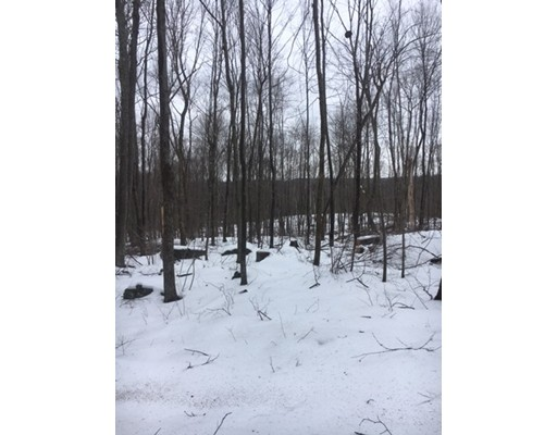 Land for Sale at Address Not Available Wales, Massachusetts 01081 United States