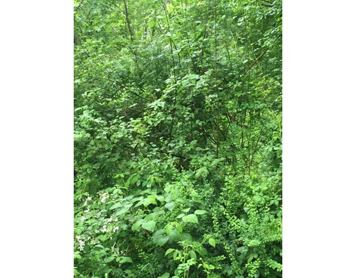 Land for Sale at 94 Pine Street 94 Pine Street Rehoboth, Massachusetts 02769 United States