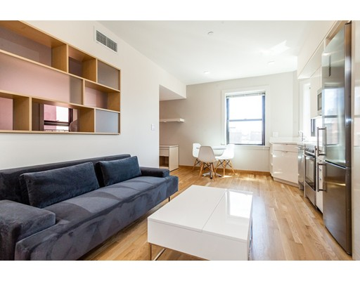 独户住宅 为 出租 在 115 Mount Auburn 坎布里奇, 02138 美国