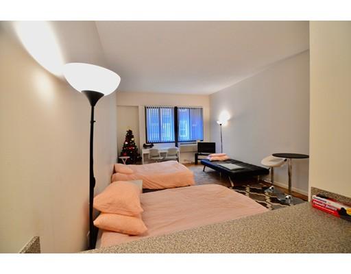 独户住宅 为 出租 在 10 Centre 坎布里奇, 02139 美国